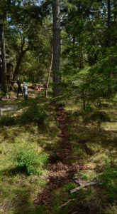 """A land art installation made by Andrew Miguel Fuller while in residency at the Alchemy Art Center. Sculptural art work by AM """"Andy"""" Fuller."""