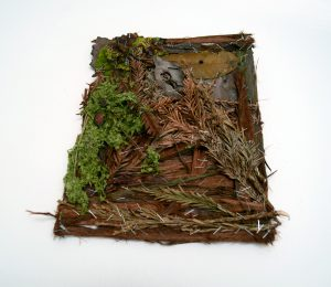 Paper/Work, 6 hours in Blake Gardens. Fine art sculpture by AM Andy Fuller. Andrew Miguel Fuller contemporary assemblage artwork. Found plant material, steel staples.